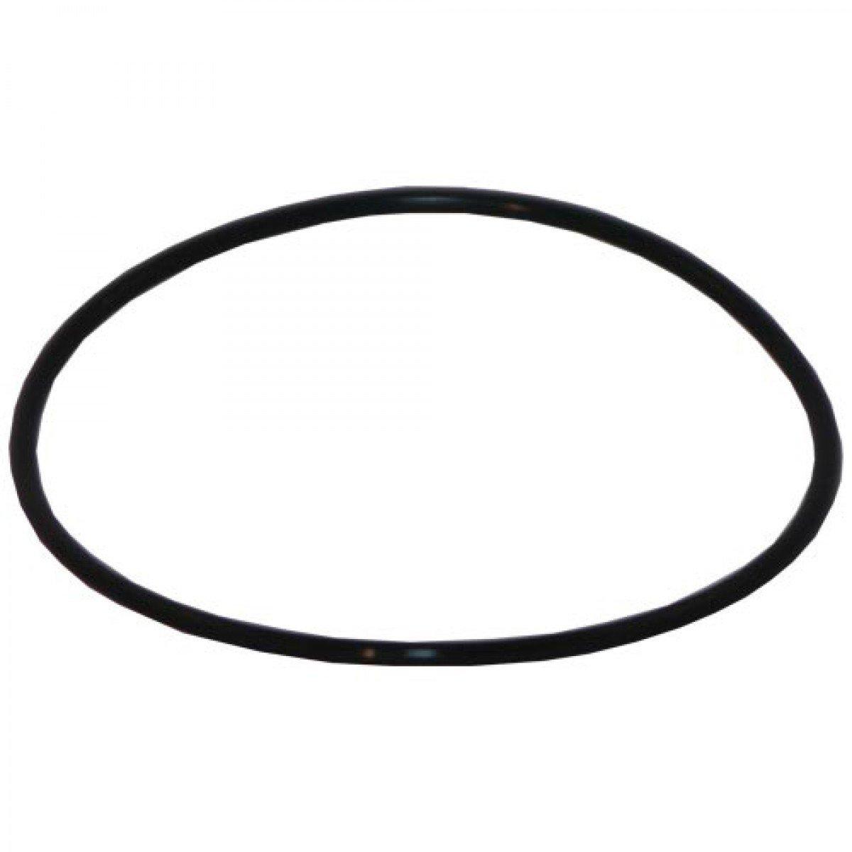 Aqua-Pure 68898-32 Water Filter O-Ring