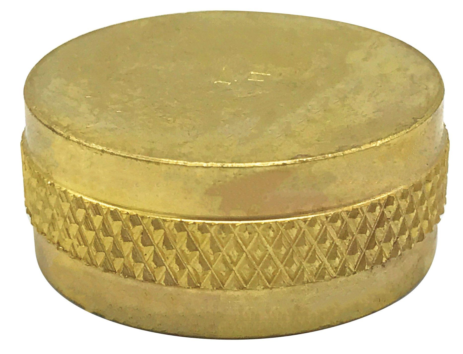 """Walrich 2607002 3/4"""" Brass Round Hose Cap"""